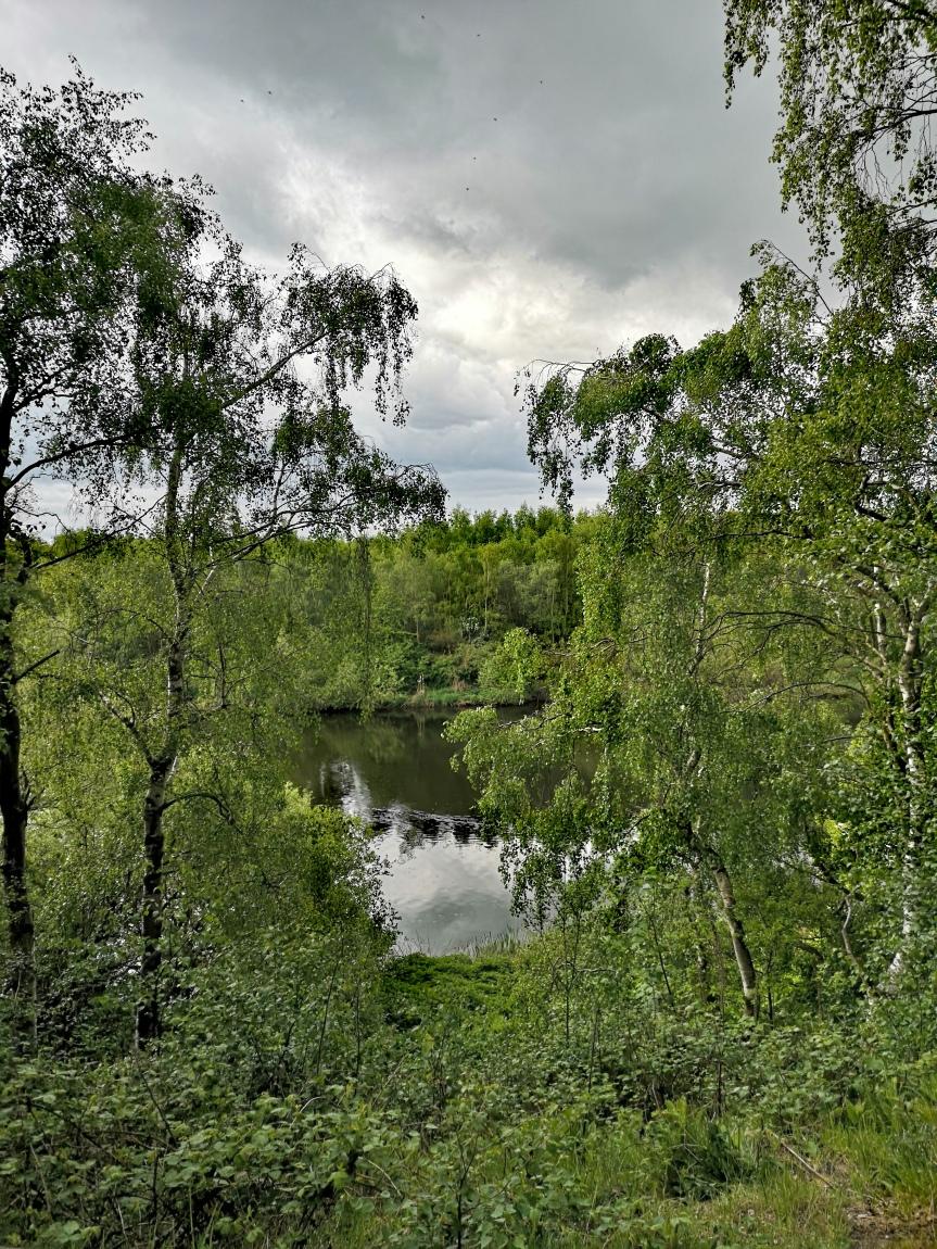 6th May: RainyMonday